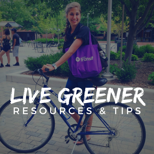 Live Greener Resources and Tips. A photo of a student on a bike with a reusable shopping bag.