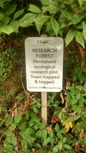 UMBC Research Forest Sign