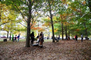 Students in the sculpture garden in the fall.