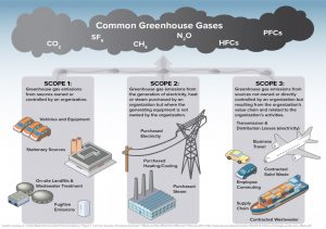 Common Sources of Emissions by Scope